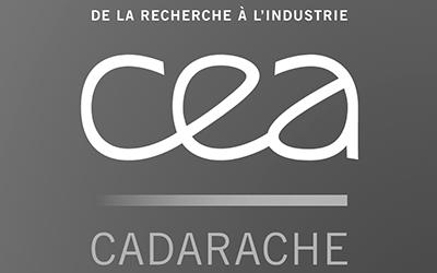 Logo CEA_NB